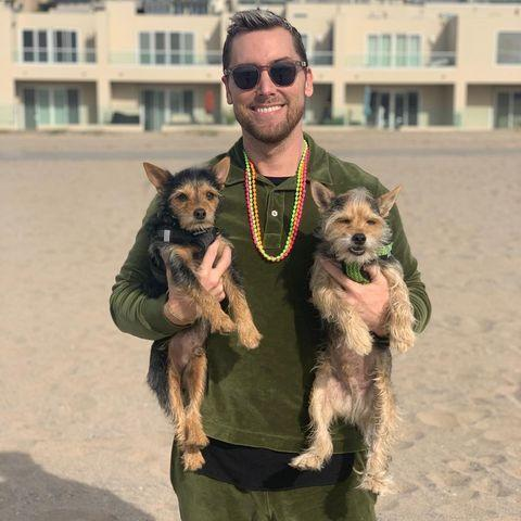 "<p>""Fitness model"" (well, that's what his IG profile says!) Lance Bass is best known as a member of the early aughts boy band *NSYNC, where he and fellow ""frosted tips survivor"" <a href=""https://www.womenshealthmag.com/life/a35492090/justin-timberlake-apology-britney-spears/"" rel=""nofollow noopener"" target=""_blank"" data-ylk=""slk:Justin Timberlake"" class=""link rapid-noclick-resp"">Justin Timberlake</a> became household names. Today, he hosts his podcast, <a href=""https://www.instagram.com/TheLanceBassShow/"" rel=""nofollow noopener"" target=""_blank"" data-ylk=""slk:The Lance Bass Show"" class=""link rapid-noclick-resp"">The Lance Bass Show</a>, and gets into internet mischief with his fiancé, Michael Turchin. Also, he loves his dogs! </p><p><a href=""https://www.instagram.com/p/CLVrO4QF-rM/"" rel=""nofollow noopener"" target=""_blank"" data-ylk=""slk:See the original post on Instagram"" class=""link rapid-noclick-resp"">See the original post on Instagram</a></p>"