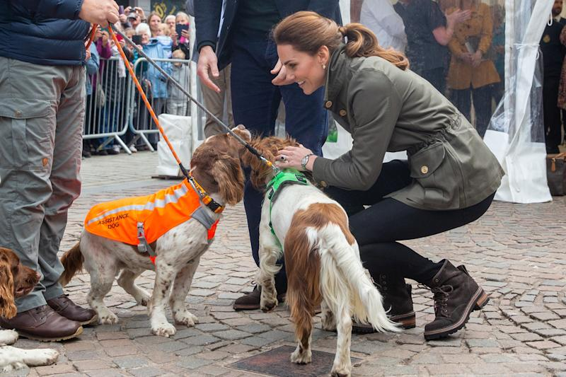 The Duchess of Cambridge was seen greeting locals in Keswick Market, where she also stopped to pet three very cute dogs