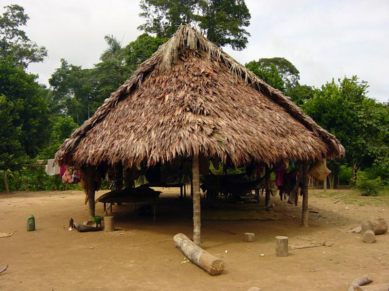 A dwelling of the Tsimane, a group of indigenous people with a traditional lifestyle deep in the Bolivian Amazon, and according to a new study released Friday March 17, 2017, they have some of the healthiest hearts on the planet, according to Dr. Randall Thompson, a cardiologist at St. Luke's Health System in Kansas City, Missouri, USA. Scientists say the new findings underline the significance of lowering the traditional risk factors for heart disease, and like the Tsimane people, we should be physically active and have a low fat, low sugar diet. (Michael Gurven/St. Luke's Health System Kansas City via AP)