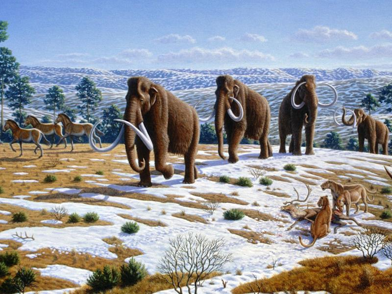 Ice_age_fauna_of_northern_Spain_ _Mauricio_Antón