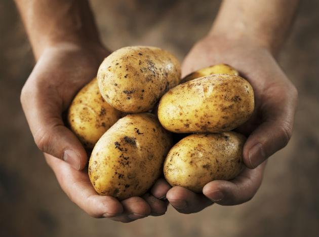 <b>Potatoes pack healthy carbs:</b> Potatoes contain a fat-fighting compound called resistant starch that can help keep weight in check. One medium spud with the skin will run you just around 100 calories, and with more potassium than bananas, potatoes also help fight heart disease by keeping blood pressure low.