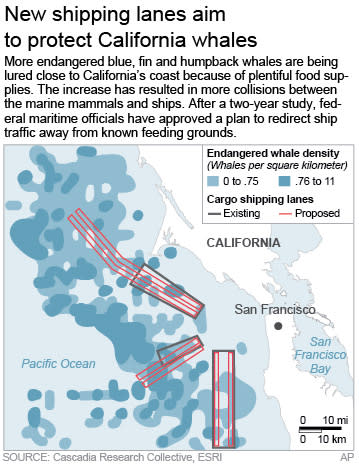 Map shows endangered whale density along the San Francisco coast as well as current and proposed cargo shipping lanes.