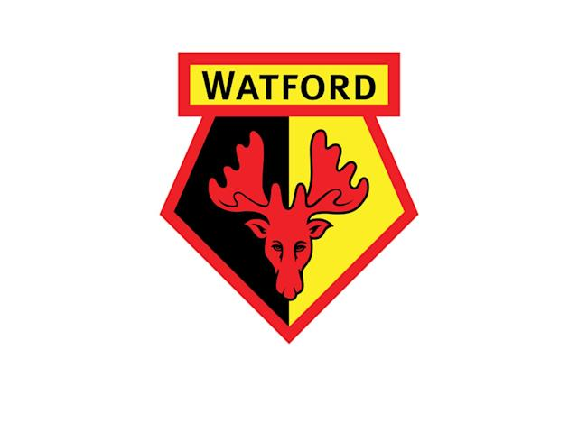 "<p>Their nickname is Hornets, but Watford's players wear a red deer on their jerseys because of the club's location in the county of Hertfordshire, just north of London. ""Hart"" is a term for stag, and the term ""hertford"" is Old English for ""hart crossing."" Hertfordshire's flag features the deer and some wavy water lines, and Watford is by some distance the county's largest football club.</p>"