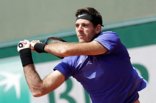 Murray, Del Potro set up French Open blockbuster