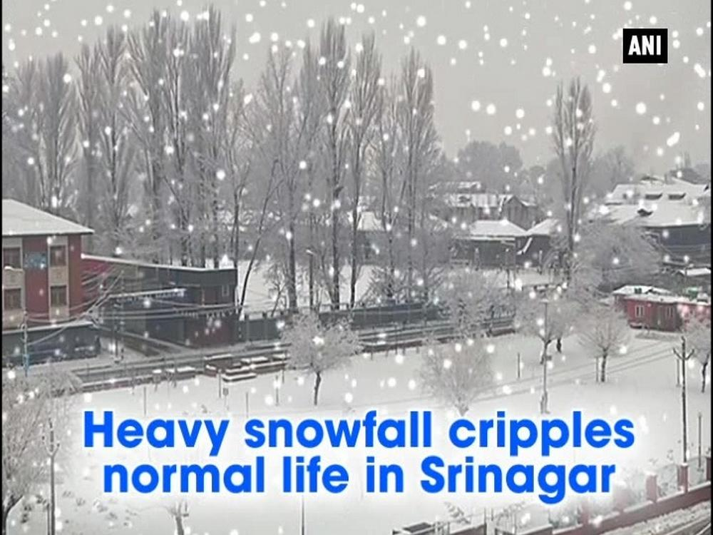 The normal life in Jammu and Kashmir's Srinagar was crippled after the business suffered due to halt in the transportation sector and electricity in the valley. Due to the high altitude and Western Disturbances, the valley is covered with a thick layer of snow causing problems to the locals in meeting their daily ends.