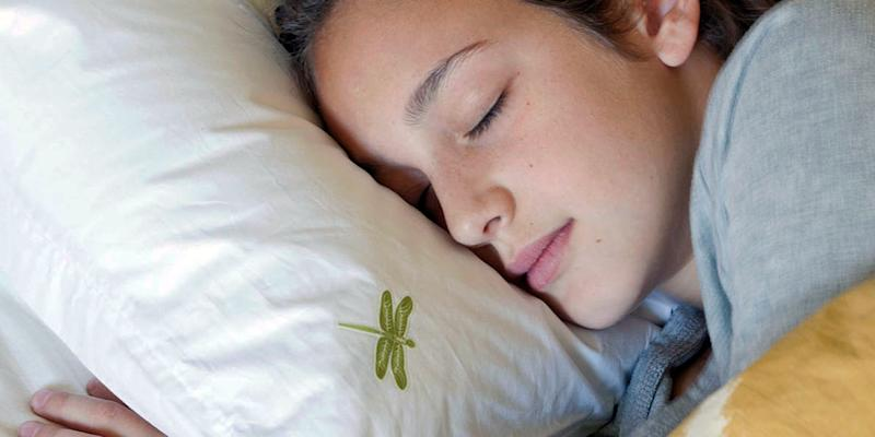 The Dreampad pillow vibrates sound into your head with no headphones