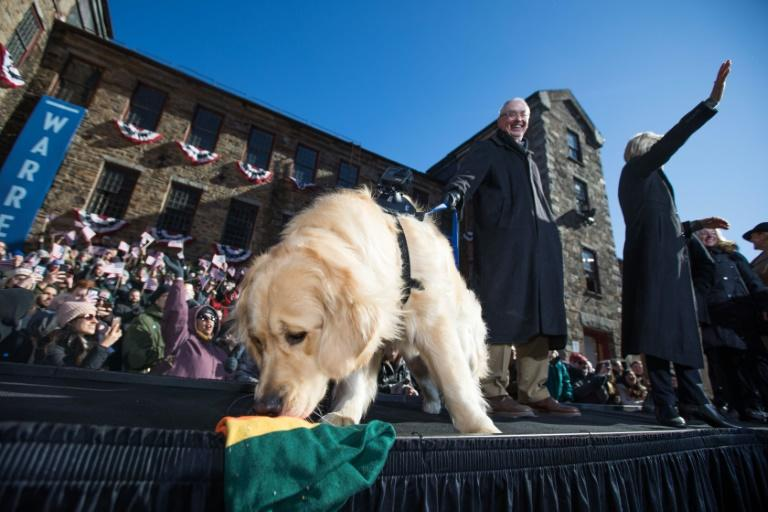 Golden retriever Bailey took the campaign stage with US Senator Elizabeth Warren and her husband Bruce Mann as Warren announced her official bid for president in Lawrence, Massachusetts in February 2019 (AFP Photo/Scott Eisen)