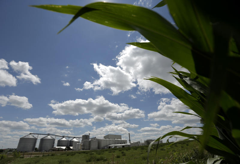 The secret environmental cost of US ethanol policy