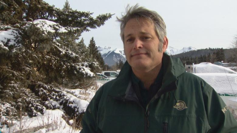 Parks Canada tracks cougar in residential area of Banff