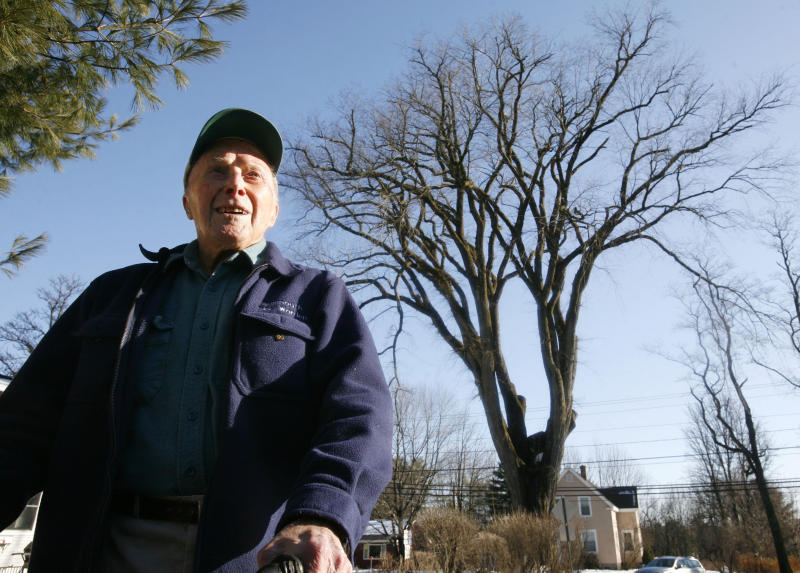 """FILE - In this Dec. 14, 2009 file photo, Frank Knight, 101, of Yarmouth, Maine, stands in front of an elm tree known as """"Herbie"""" in Yarmouth. Knight took care of the tree for about 50 years while working as the Yarmouth tree warden. The tree, estimated to be 217 years old, was cut down Jan. 19, 2010 after suffering numerous bouts of Dutch elm disease. """"Herbie"""" may be gone, but he'll live on in cloned trees that are now being made available to the public. (AP Photo/Steven Senne, File)"""