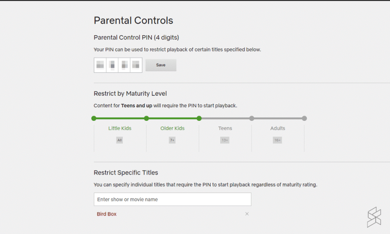For better control, parents could also enable a 4-digit pin which further restricts access to content based on maturity. — Picture via SoyaCincau