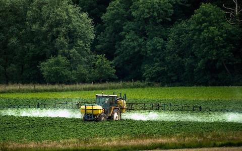 The number of hectares where pesticides are used has soared since 1990 - Credit: Phillipe Huguen AFP