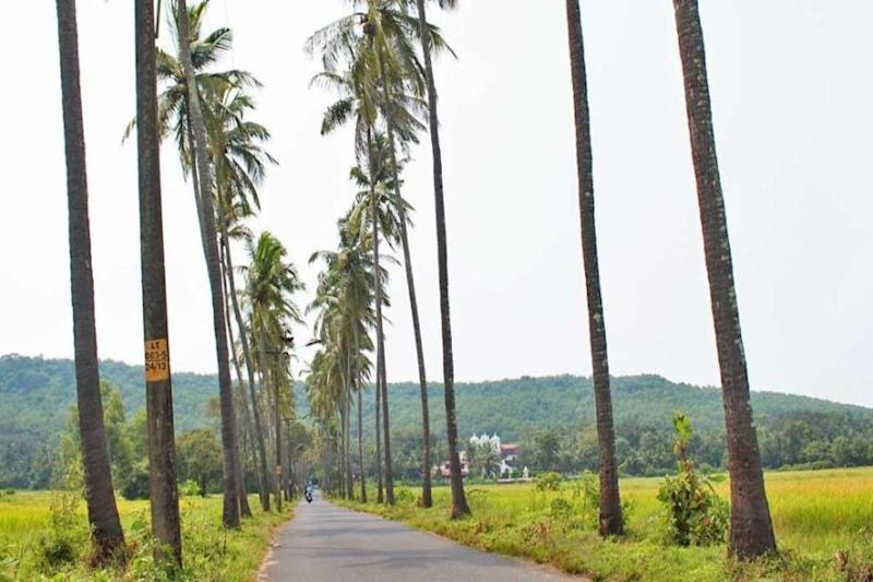 Picturesque Goa Village Levies 'Swachhta Tax' on Tourists Seeking Photos, Scraps Move After Uproar