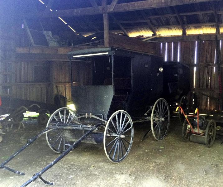 The horse-drawn carriage used by Kathryn and Raymond Miller to travel is pictured in Bergholz, Ohio June 6, 2014. The Millers, members of an Amish breakaway sect from eastern Ohio at the center of shocking 2011 hair-cutting attacks on other Amish followers, are trying to settle back into life at home after being exposed in prison to a world their religion is focused on locking out. Picture taken June 6, 2014. To match feature USA-AMISH/ REUTERS/Kim Palmer (UNITED STATES - Tags: SOCIETY CRIME LAW RELIGION)