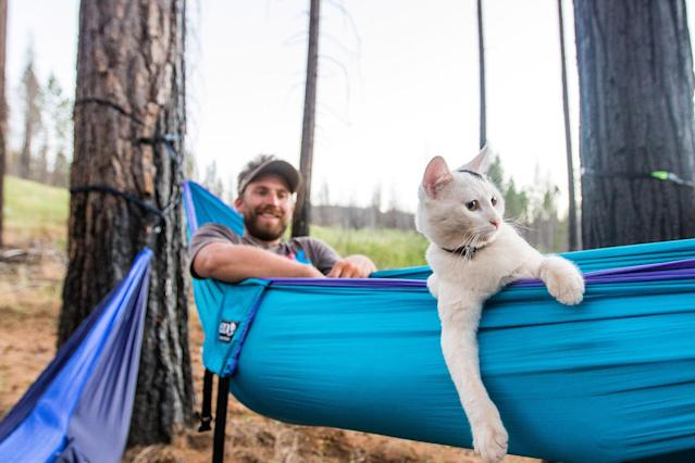 <p>Hammock time outside of Yosemite National Park, California. (Photo: Our Vie / Caters News) </p>