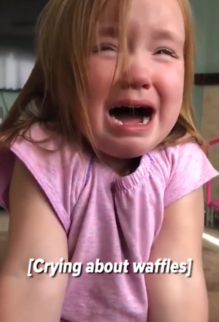 The moment of realisation when you realise you need to eat something other than waffles today... Photo: Storyful