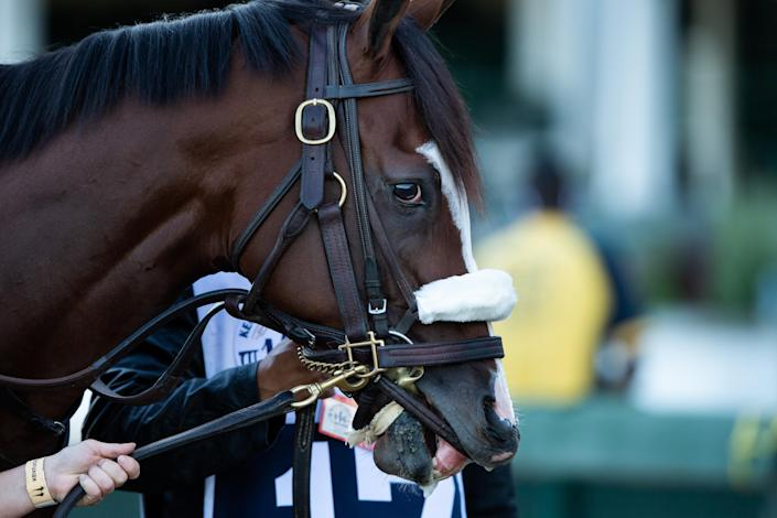 Tiz the Law at the 146th Kentucky Derby