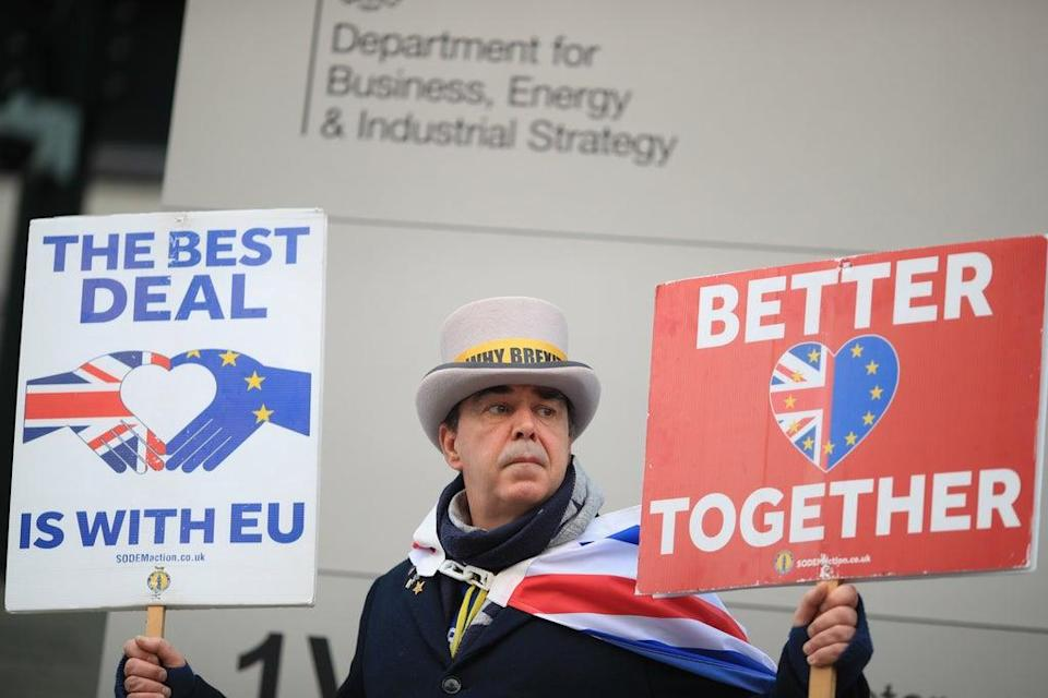 Anti-Brexit protester Steve Bray (Aaron Chown/PA) (PA Archive)