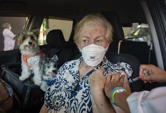 Maria Helena Alcantara gets a shot of the Sinovac COVID-19 vaccine while she sits in her car with her pets during a priority vaccination program for seniors at a drive-thru site set up in the Pacaembu soccer stadium parking lot in Sao Paulo, Brazil, Wednesday, March 3, 2021. (AP Photo/Andre Penner)