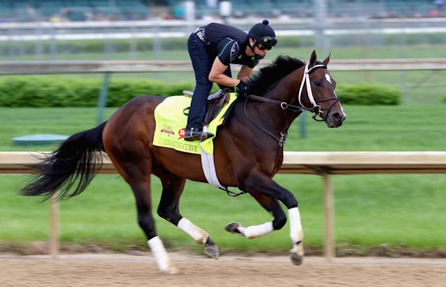 LOUISVILLE, KY - APRIL 30: Commanding Curve runs on the track during the morning training for the Kentucky Derby at Churchill Downs on April 30, 2014 in Louisville, Kentucky. (Photo by Andy Lyons/Getty Images)