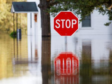 A neighborhood is submerged in flood waters from the swollen Tar River in the aftermath of Hurricane Matthew, in Tarboro, North Carolina on October 13, 2016.   REUTERS/Jonathan Drake