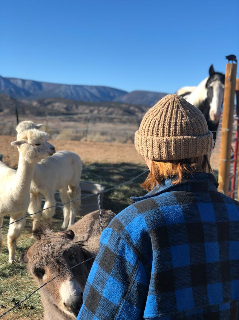 Every morning in our ranch we fed the horse, the two shy alpacas, and the four greedy mini donkeys. So hard to leave this place! So much love!