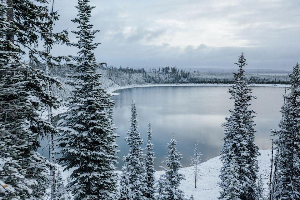 <p>A frozen lake in Yellowstone National Park looks more like a picture someone painted than an actual photograph. Winters in this park mean freezing temps, so it's not for the faint of heart. </p>