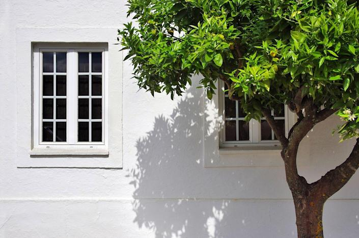 """<p>If light can't reach your window, it certainly won't be able to brighten your room. Make sure any bushes or trees near your windows are trimmed regularly, and avoid planting trees on the southern side of your home (as <a href=""""http://www.scandinavianhomestaging.com/10-ways-to-bring-natural-light-into-your-home/"""" rel=""""nofollow noopener"""" target=""""_blank"""" data-ylk=""""slk:Scandinavian Home Staging"""" class=""""link rapid-noclick-resp"""">Scandinavian Home Staging</a> explains, the sun will be too high for the trees to provide shade in the summer, and in the winter, the foliage will block your windows from solar warmth). </p>"""