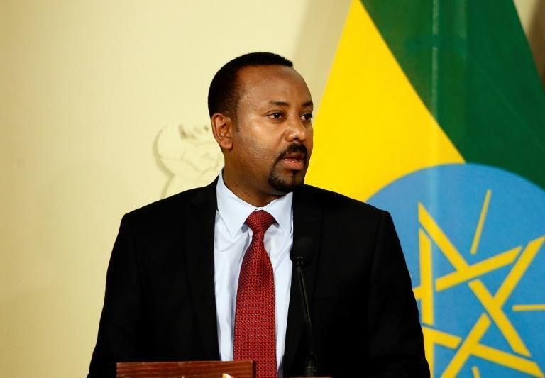 Ethiopian Prime Minister Abiy Ahmed Ali won the Nobel Peace Prize last year for his reforms (AFP Photo/Phill Magakoe)