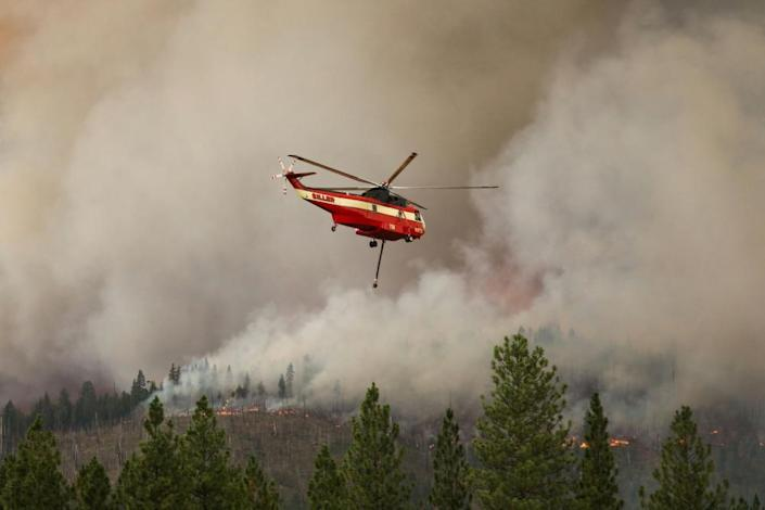 The US Forest Service performs a prescribed burn using incendiary balls dropped from a helicopter in Meadow Valley as a way to control the progress of the Dixie fire, on 31 July.