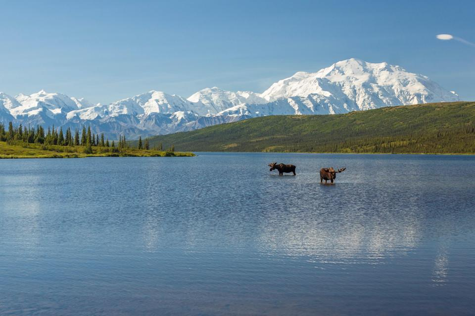 """<p><strong>Best camping in Alaska:</strong> Wonder Lake, <a href=""""https://www.cntraveler.com/story/it-took-visiting-the-wildest-of-places-to-overcome-my-fear-of-the-outdoors?mbid=synd_yahoo_rss"""" rel=""""nofollow noopener"""" target=""""_blank"""" data-ylk=""""slk:Denali National Park"""" class=""""link rapid-noclick-resp"""">Denali National Park</a></p> <p>Arguably the spot with the most tantalizing view of Denali, Wonder Lake is a wilderness seeker's dream. Accessible by shuttle bus, this tents-only primitive campground sits lakeside in the vast Alaskan tundra, amidst crimson dwarf birch shrubs.</p>"""