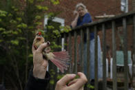 Home owner and bird watcher Sheila Salo watches from her deck as a female cardinal is held by a researcher and removed gently from a mist net, Wednesday, April 28, 2021, in Cheverly, Md. Cornell University's records show a boom in amateur bird-watching. The number of people submitting eBird checklists — recording their bird sightings — was up 37% in 2020 compared with the previous year. (AP Photo/Carolyn Kaster)