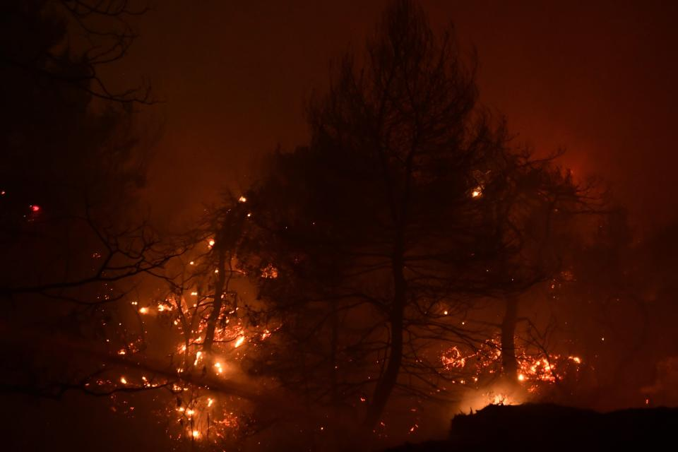 A wildfire burns a forest in Afidnes area, northern Athens, Greece, Thursday, Aug. 5, 2021.Wildfires rekindled outside Athens and forced more evacuations around southern Greece Thursday as weather conditions worsened and firefighters in a round-the-clock battle stopped the flames just outside the birthplace of the ancient Olympics. (AP Photo/Michael Varaklas)
