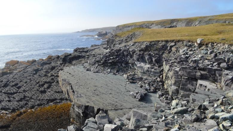 Locals say they're being overlooked for jobs at Mistaken Point site