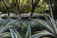 Visitors walk in the garden during a guided tour of Roberto Burle Marx's former home, which was elected today as a World Heritage Site by the United Nations Educational, Scientific and Cultural Organization, UNESCO, in Rio de Janeiro, Brazil, Tuesday, July 27, 2021. The site features more than 3,500 species of plants native to Rio and is considered a laboratory for botanical and landscape experimentation. (AP Photo/Bruna Prado)