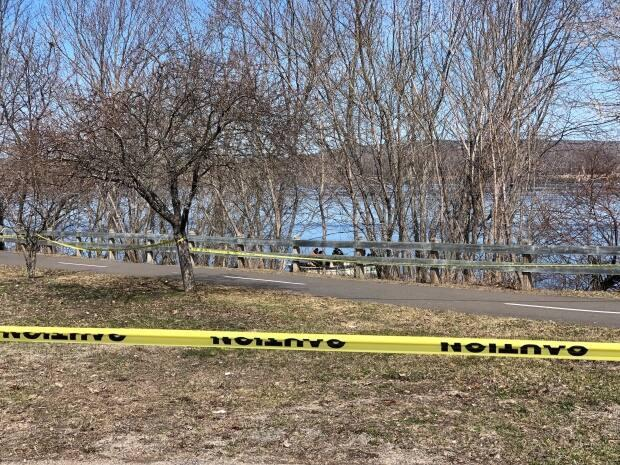 Emergency divers are expected to search the St. John River for a missing man.