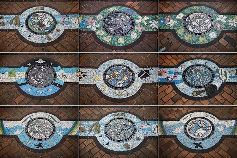"Appealing to a Japanese love of detail and ""kawaii"" (""cute""), bespoke manhole covers adorn the streets of 1,700 towns, cities and villages across Japan and have spawned a collection craze among so-called ""manholers"" (AFP Photo/Behrouz MEHRI)"