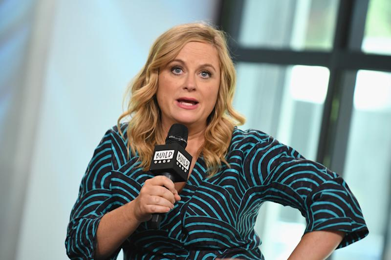 Amy Poehler has two sons. (Gary Gershoff via Getty Images)