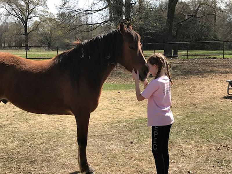 10-Year-Old Devotes Free Time to Raising Thousands for Animal