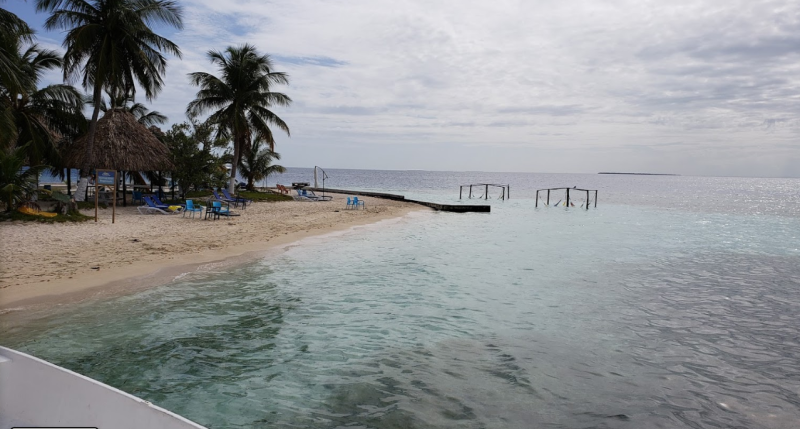 The Rendezvous Caye island is less than an acre in size. Source: Google Maps/Nuresh Maredia
