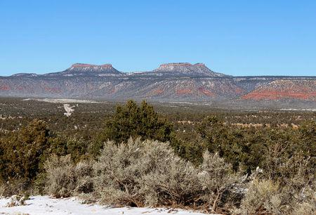 Bears Ears, the twin rock formations in Utah's Four Corners region is pictured in Utah, U.S. December 19, 2016. REUTERS/Annie Knox