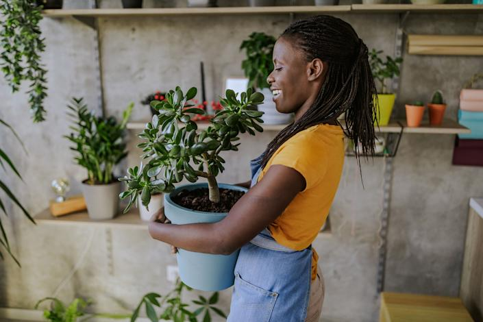 The size planter you use can mean a lot for the future health of your plant. (Photo: Pekic via Getty Images)