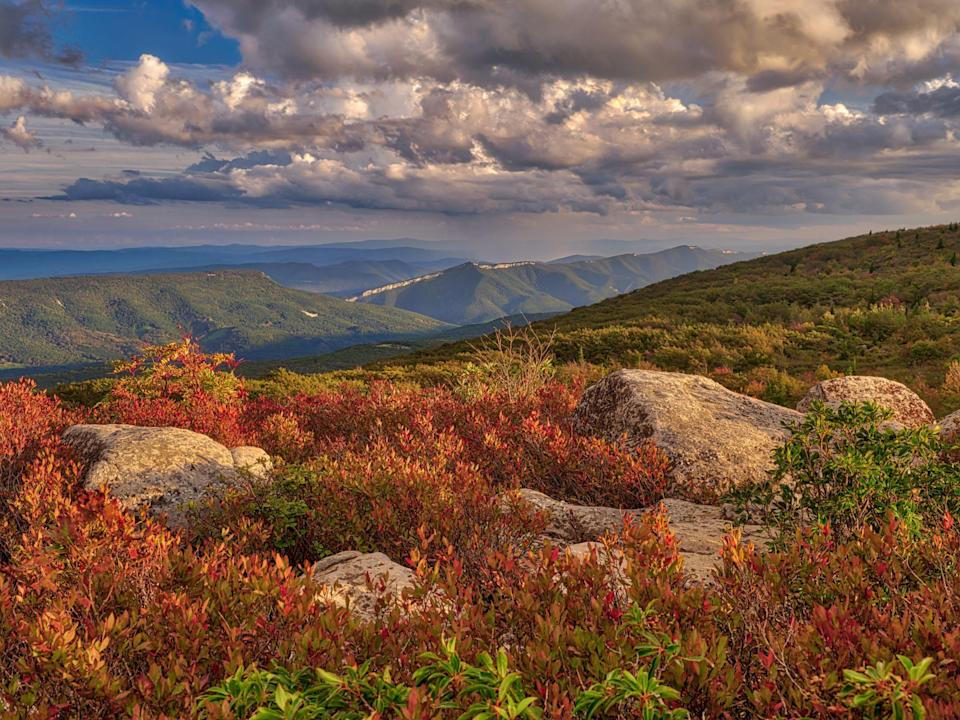 <p>The Alleghenies are part of the Appalachian Mountain Range and extend 400 to 500 miles from Pennsylvania to southwest Virginia. They also rise in parts of Maryland and West Virginia. Its highest point is atop Spruce Mountain in West Virginia, and other peaks include Mount Davis, Gaudineer Knob, and Bald Knob.</p>