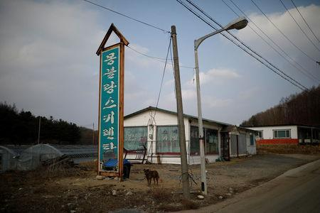 An abandoned ski rental shop stands in front of the Alps Ski Resort located near the demilitarised zone separating the two Koreas in Goseong, South Korea, January 17, 2018. REUTERS/Kim Hong-Ji