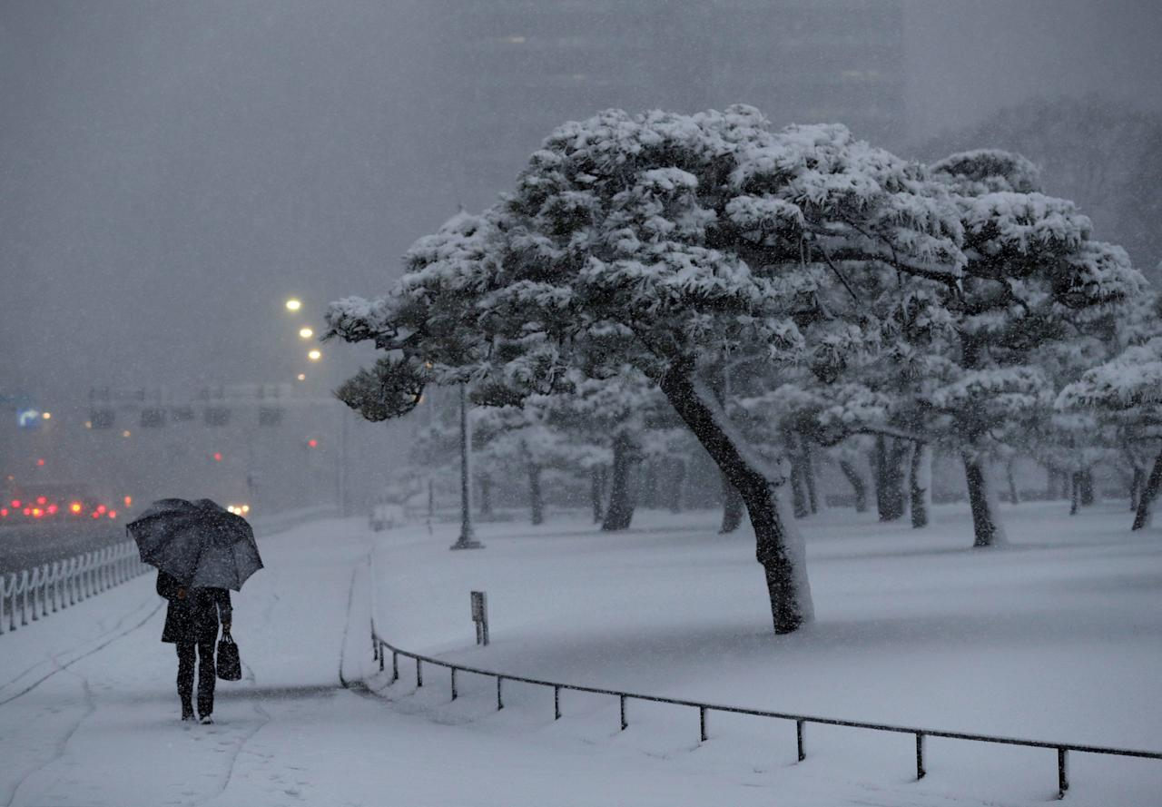 A man holding an umbrella makes his way in the heavy snow nearby the Imperial Palace in Tokyo, Japan January 22, 2018. REUTERS/Kim Kyung-Hoon