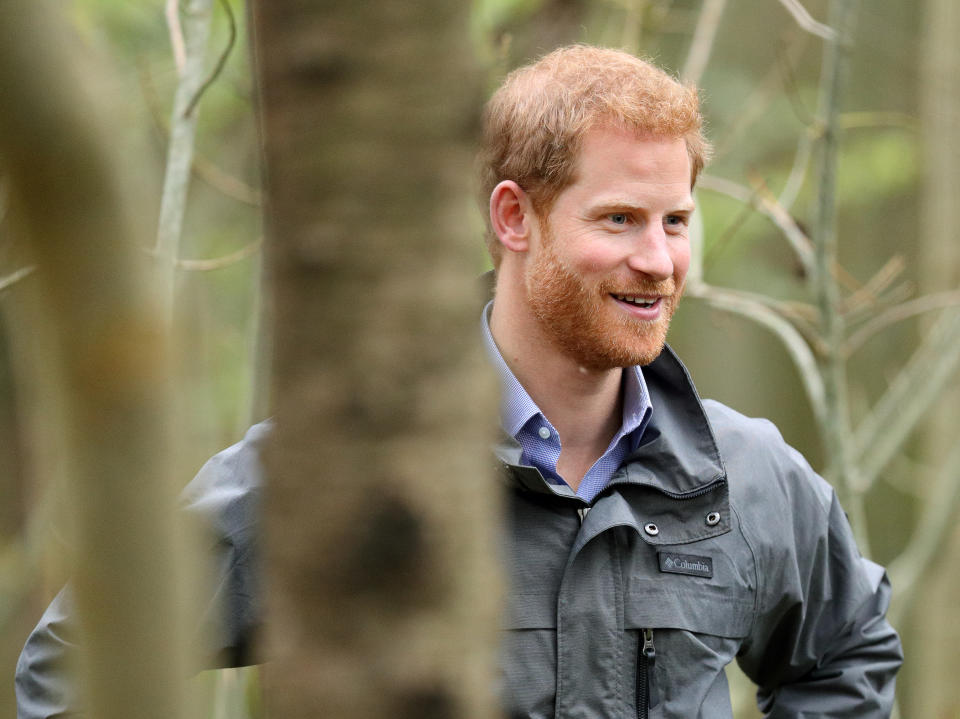 PRESTON, UNITED KINGDOM - OCTOBER 23: (EMBARGOED FOR PUBLICATION IN UK NEWSPAPERS UNTIL 48 HOURS AFTER CREATE DATE AND TIME) Prince Harry visits Myplace at Brockholes Nature Reserve, a project which aims to empower young people by encouraging them to take action in environmental activity to improve areas for wildlife, communities and their own wellbeing on October 23, 2017 in Preston, England. (Photo by Max Mumby/Indigo/Getty Images)