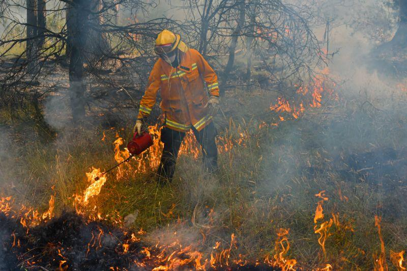A firefighter hoses a bushfire near Corryong in Victoria.