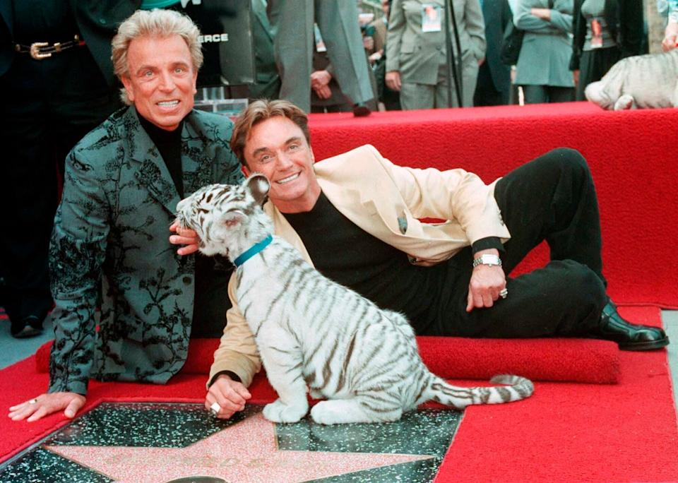 <p>llusionists Siegfried Fischbacher, left and Roy Uwe Ludwig Horn pose for photographers with a white tiger cub</p> (AP)
