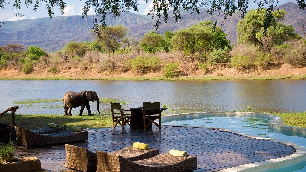 "The <a href=""https://timeandtideafrica.com/camp/chongwe-river-house"" target=""_blank"">Chongwe River House</a> is an intimate private home set against the landscape of the Chongwe River and surrounding mountains in Zambia. This poolside experience is the most unique because wildlife is prone to stomp through your camp, giving your stay a safari-like experience—and, as pictured above, you never know who may want to join you in your luxury pool."