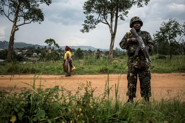 UN peacekeepers back DR Congo's armed forces in the conflict-ridden east